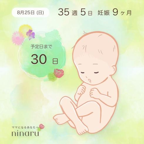 img_5037